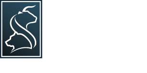 Super Stock Screener
